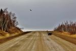 dalton highway (2)