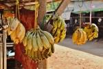 birma jedzenie (9)