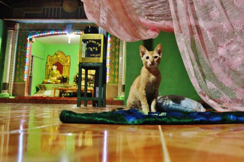 Birma. noclegi (3)