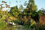 birma noclegi (2)