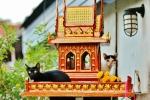 chiang mai (10)