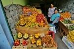 Ekwador (17)