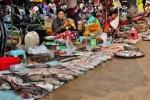 food in cambodia (6)