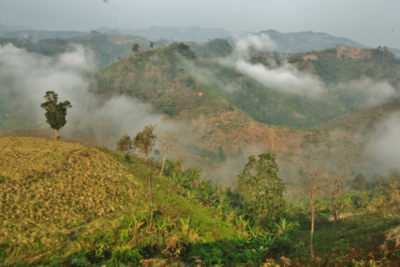 Laos (1)