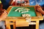domino (2)